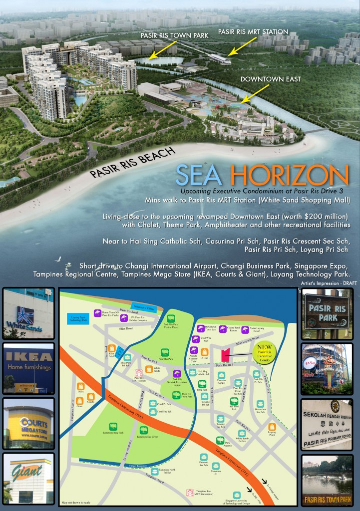 12072013-Sea Horizon Flyer- Back