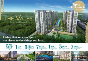 the vales ec flyer